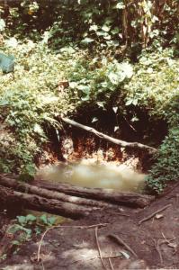 Wasserquelle für die Schule 1981